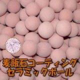 麦飯石コーティングセラミックボール 直径10mm/1000g