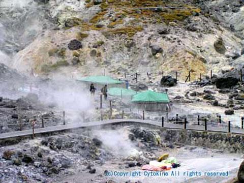 玉川温泉 岩盤浴テント群