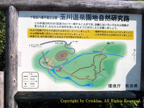 玉川温泉園地自然研究路の立て看板