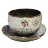 陶碗皿 花兎(紅) [美濃焼]