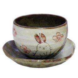 画像1: 陶碗皿 花兎(紅) [美濃焼]