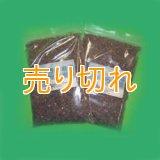 ヒマラヤ ブラック岩塩 粒粒タイプ2000g