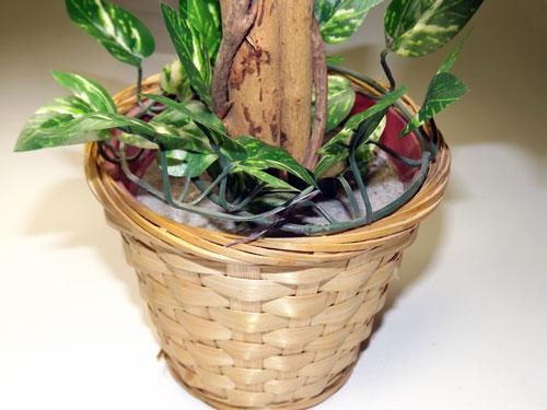 造花の観葉植物