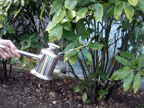 柄杓型噴霧器の噴霧使用例