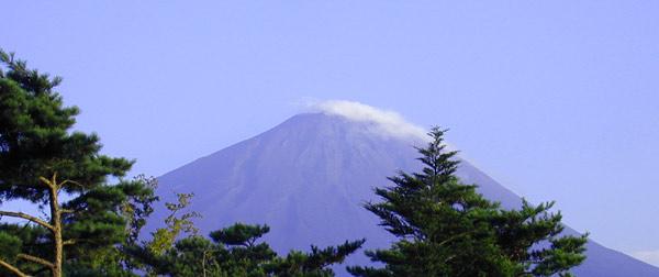 鳴沢から見た夏富士